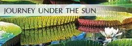 Journey Under the Sun