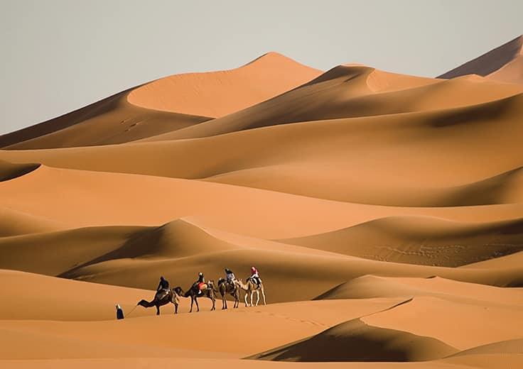 Dubia, UAE