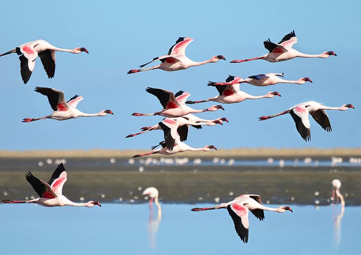 Walvis Bay, Nambia